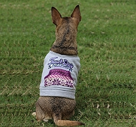 Touchdog Style Of Campus Winter T -Shirt - Large