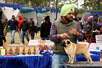 Amritsar Kennel Club