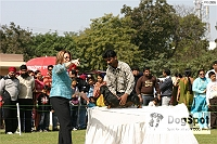 Patiala Dog Show 2009