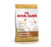 Royal Canin Labrador Adult -3 Kg