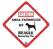 Vacky Pet Car Signs with Caption Caution Beagle   - (6X6) Inch