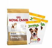 Royal Canin Beagle Adult - 3 Kg with Treats