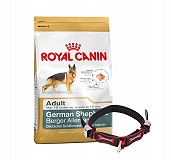 Royal Canin German Shepherd Adult - 3 Kg With Ergocomfort Dog Collar Large-Red