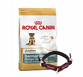Royal Canin German Shepherd Junior - 3 Kg With Ergocomfort Dog Collar Small-Red