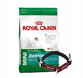 Royal Canin Mini Junior - 4 Kg With Ergocomfort Dog Collar Small-Red