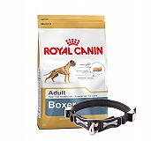 Royal Canin Boxer Adult - 3 Kg With Ergocomfort Dog Collar Large-Black