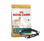 Royal Canin Golden Retriever Adult - 3 Kg With Ergocomfort Dog Collar Large-Black