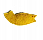 CatSpot Loofah Fish Cat Toy