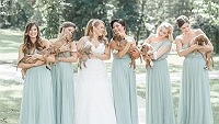 these-bridesmaids-ditched-bouquets-held-adorable-pups-instead