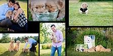 7 Pet Photography Tips Every Dog-Parent ..