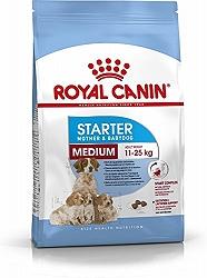 Royal Canin Medium Starter - 1 Kg
