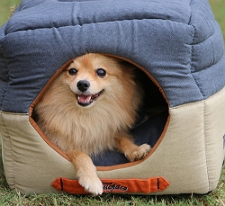 Touchdog Convertible And Reversible Vintage Printed Squared 2-In-1 Collapsible Dog House Bed - Small