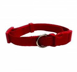 DogSpot Premium Adjustable Nylon Collar Red 15 mm - Small