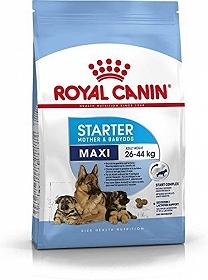 Royal Canin Maxi Starter - 4 Kg
