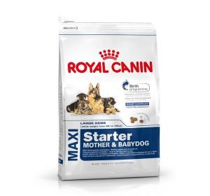 Royal Canin Maxi Starter - 1 Kg