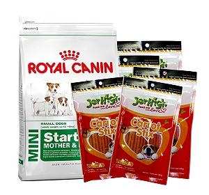 Royal Canin Mini Starter - 3 Kg With Dog Treats