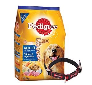 Pedigree Adult Dog Food Chicken & Vegetables - 3 Kg With Ergocomfort Dog Collar Large-Red