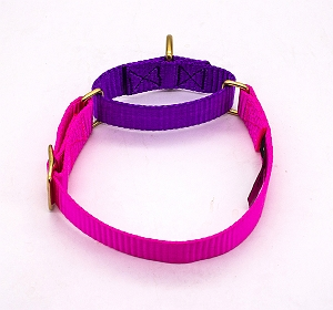 Forfurs Duo Martingale Collar Hot Pink & Ultra Violet - Large
