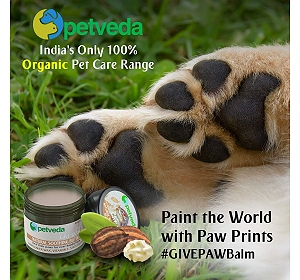 Petveda Natural Soothing Butter(For Paw, Nose & Elbow) - 30 gm