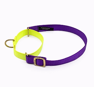 Forfurs Duo Martingale Collar Ultra Violet & Lime Green - Small