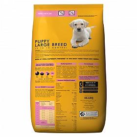 pedigree large breed dog food
