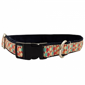 Mutt of Course Candy Barrr Collar for Dogs- Medium