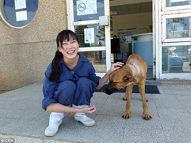 Vet And Director Of Taiwanese Animal Shelter ..