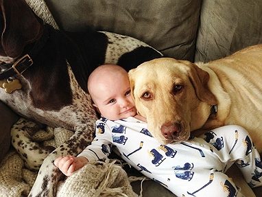 A touching letter from a dog to human baby