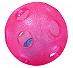 Gnawsome Rattle Ball Pink - 4 Inches