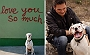 A Dog's Open Letter To His Owner On The Last Day Of The Puppy's Life | Dogspot.in