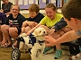 Adorable Story of a Blind Dog Rock-Star Noah Who Teaches Diversity At This School