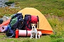 5 Reasons Why You Should Be Going Backpacking With You Dog Rightnow | Dogspot.in