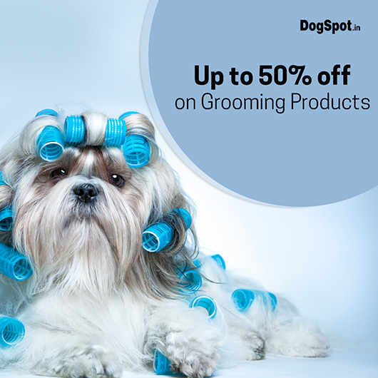 Fresh Offers On Grooming Essentials🐶..