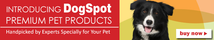 Dogspot Products