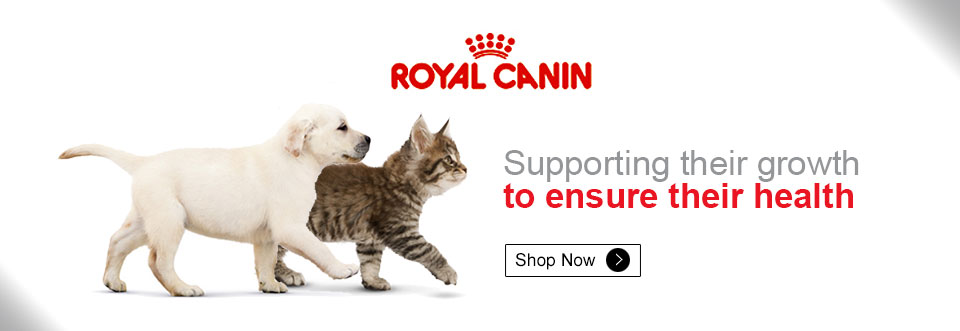 Dogspot In Online Pet Supplies Store Shop For Dog Cat