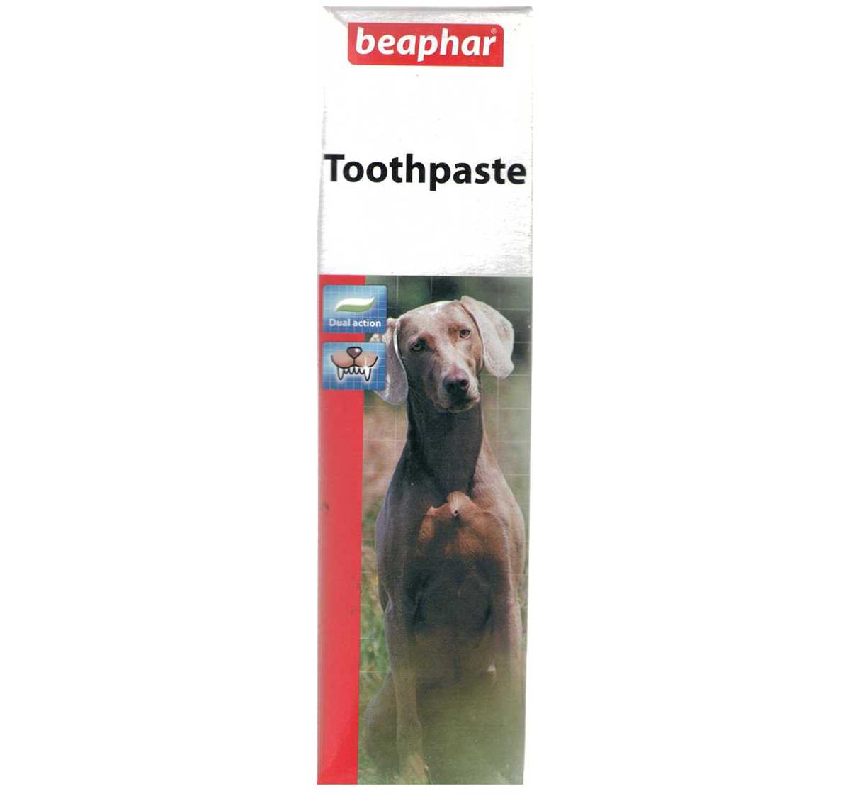 Best Dog Toothpaste Australia
