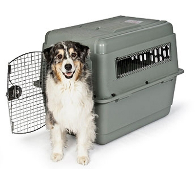 Extra Large Dog Travel Crate Petmate Sky Kennel 40lx 27wx