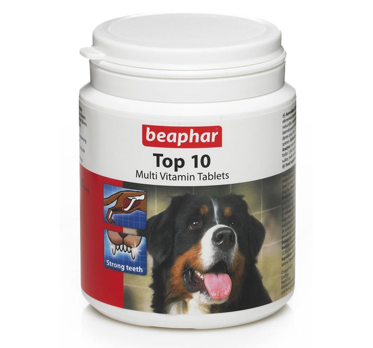 Best dog multivitamin