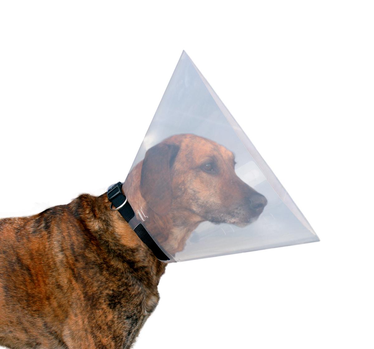Trixie Dog Protective E Collar Small 5 Inch Dogspot