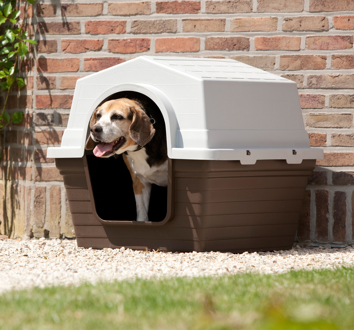 savic dog home medium rs