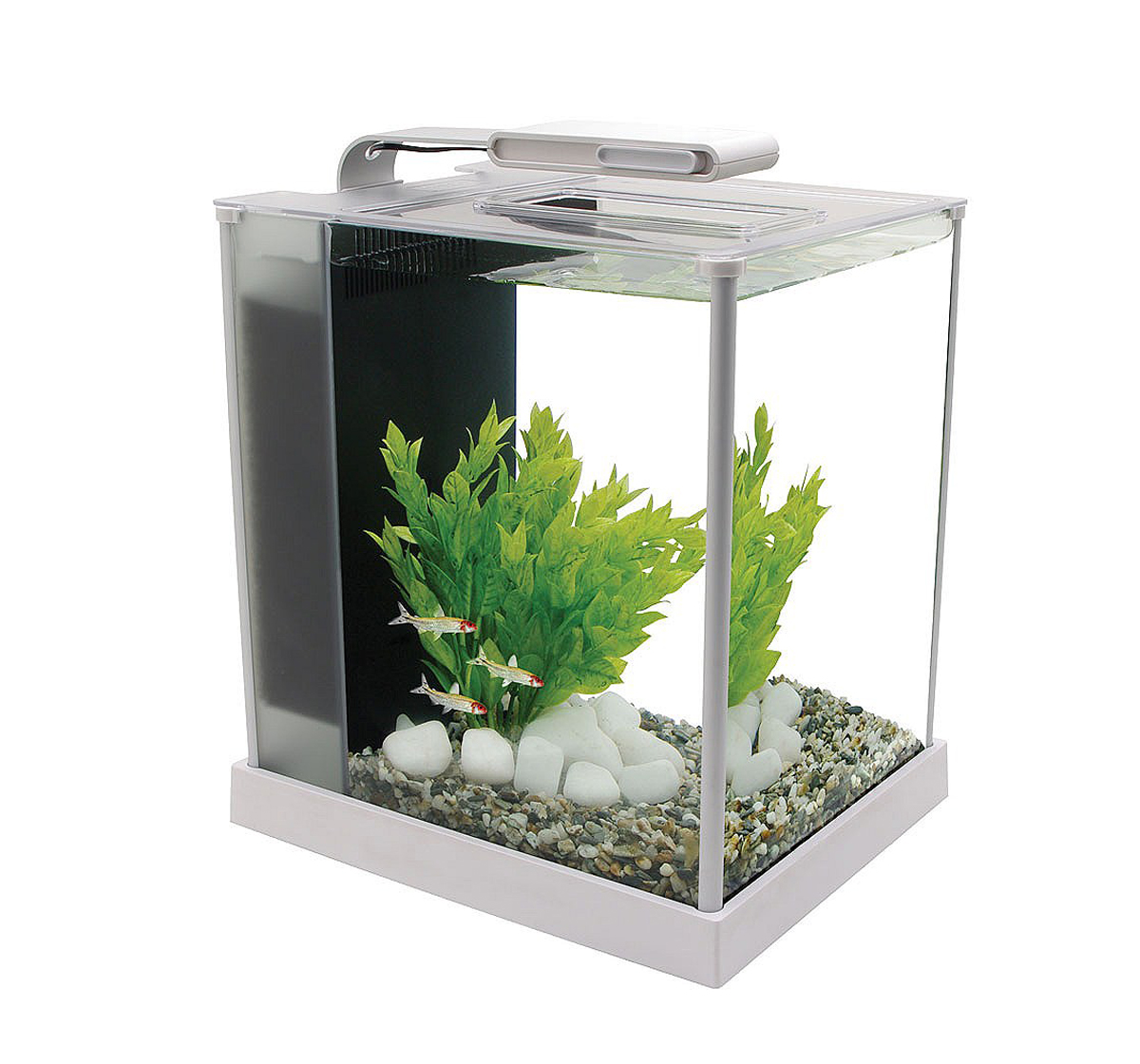 Fish Aquarium Rates In Delhi - Small fish tank maintenance price in india 2017 fish tank maintenance