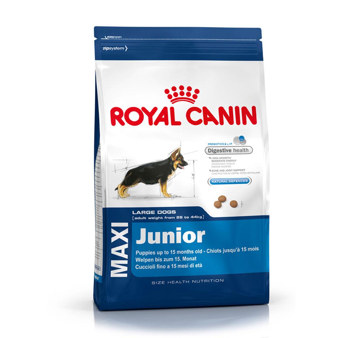 royal canin maxi junior 4 kg dogspot online pet. Black Bedroom Furniture Sets. Home Design Ideas