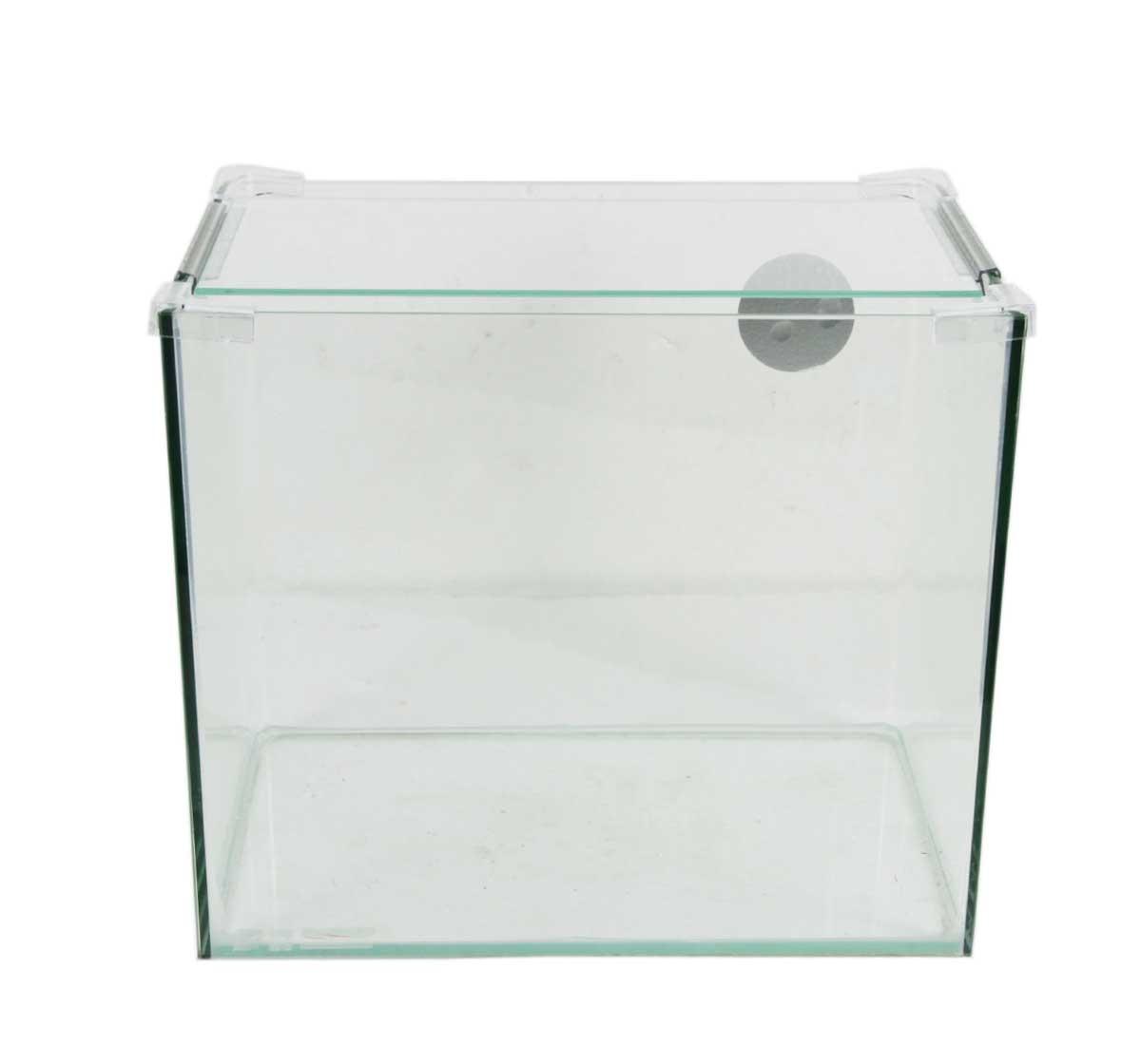 Dolphin Glass Aquarium Small - (LxWxH - 13x8x11 Inch) Aquariums ...