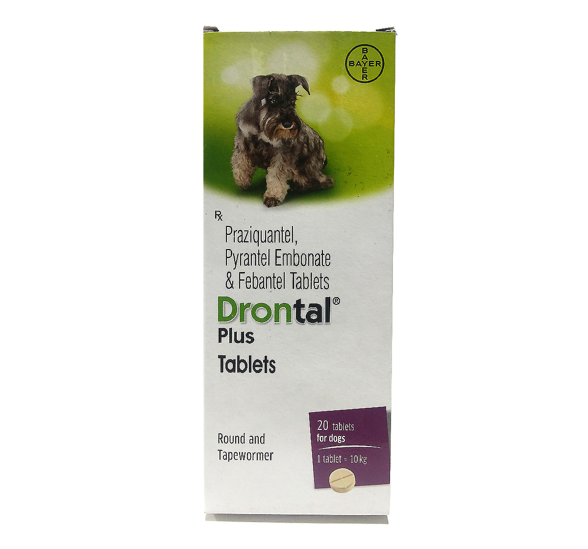 vet drontal plus small dogs can.