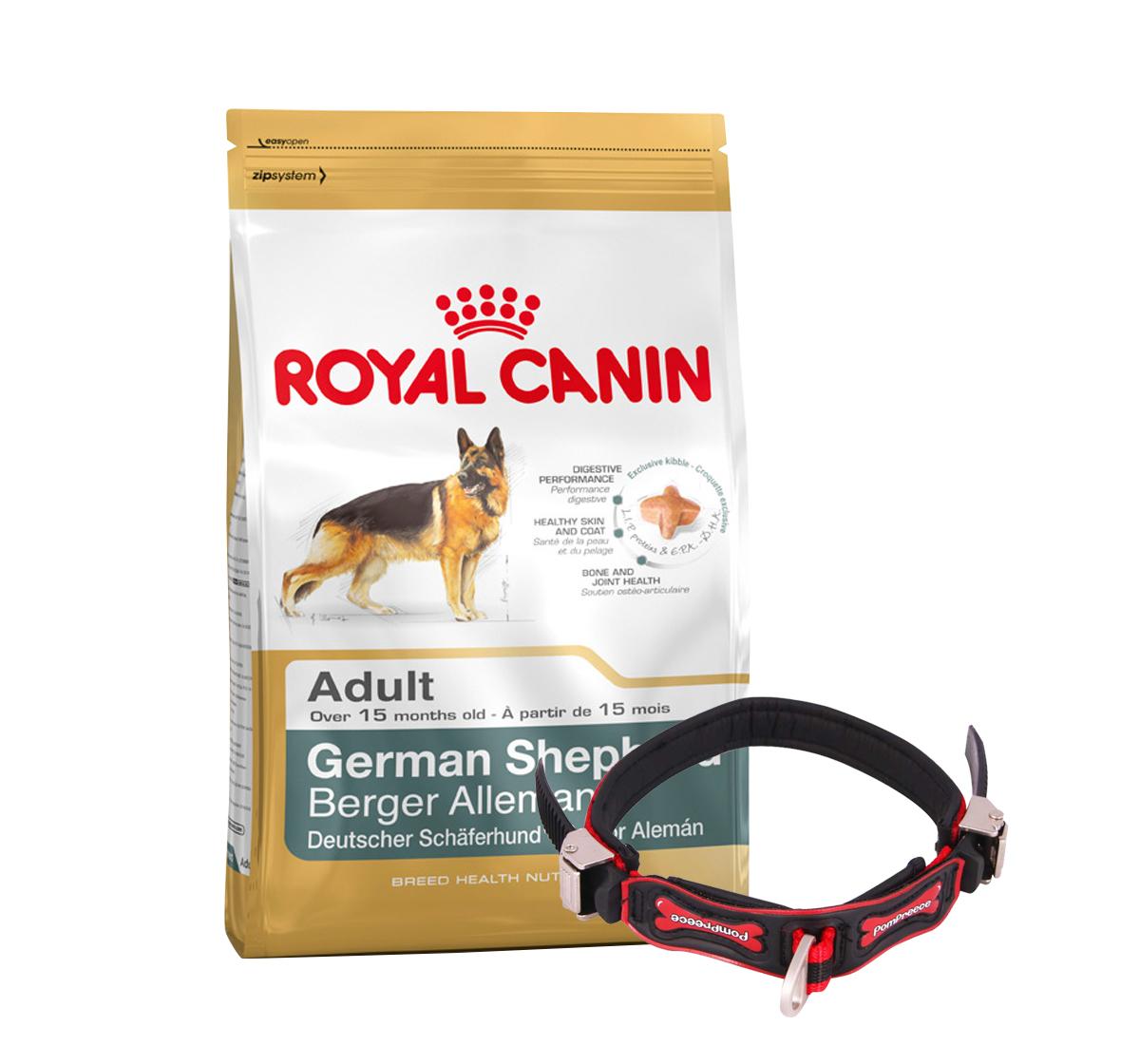 Royal Canin German Shepherd Adult - 3 Kg With Ergocomfort Dog Collar Large-Red