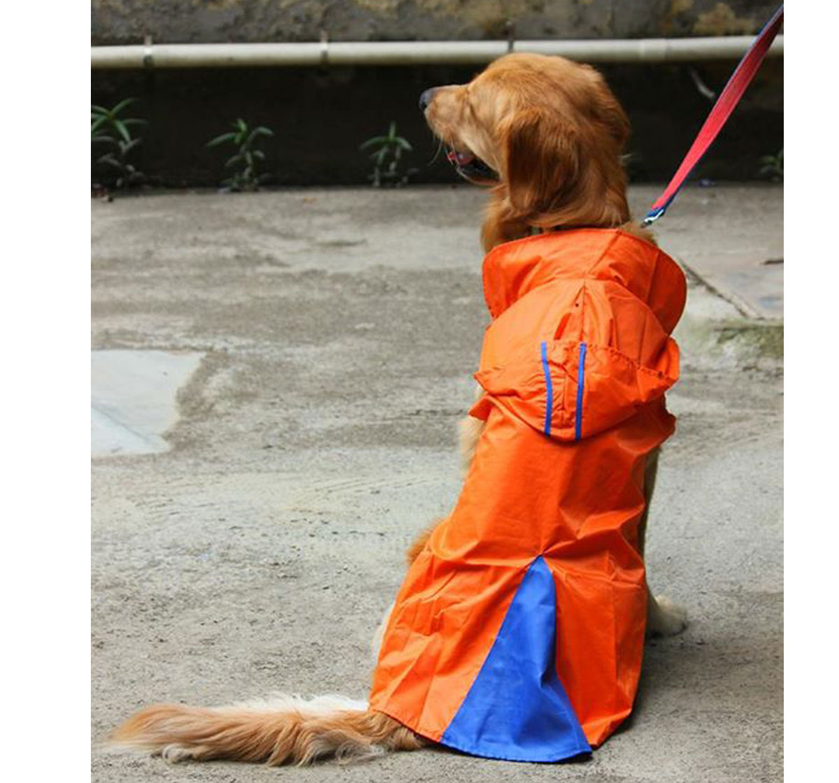 DogSpot Hooded Raincoat Orange Size -12