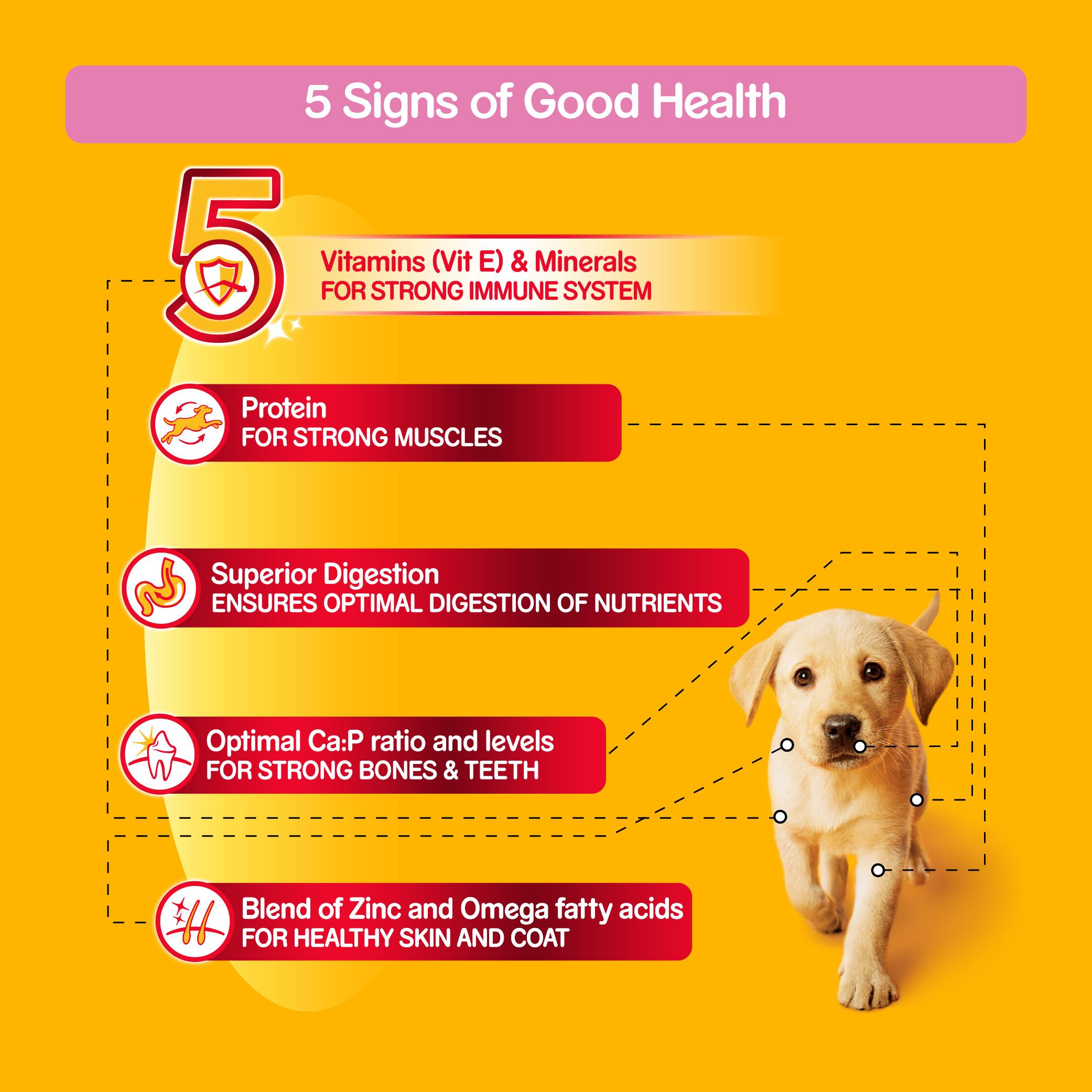 Pedigree Dog Food Puppy Chicken Milk 1 2 Kg Dogspot Online