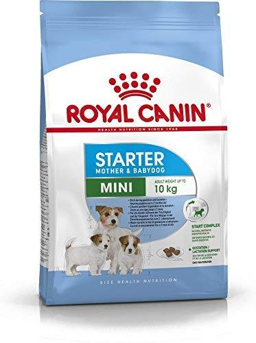 Royal Canin Mini Starter - 3 Kg