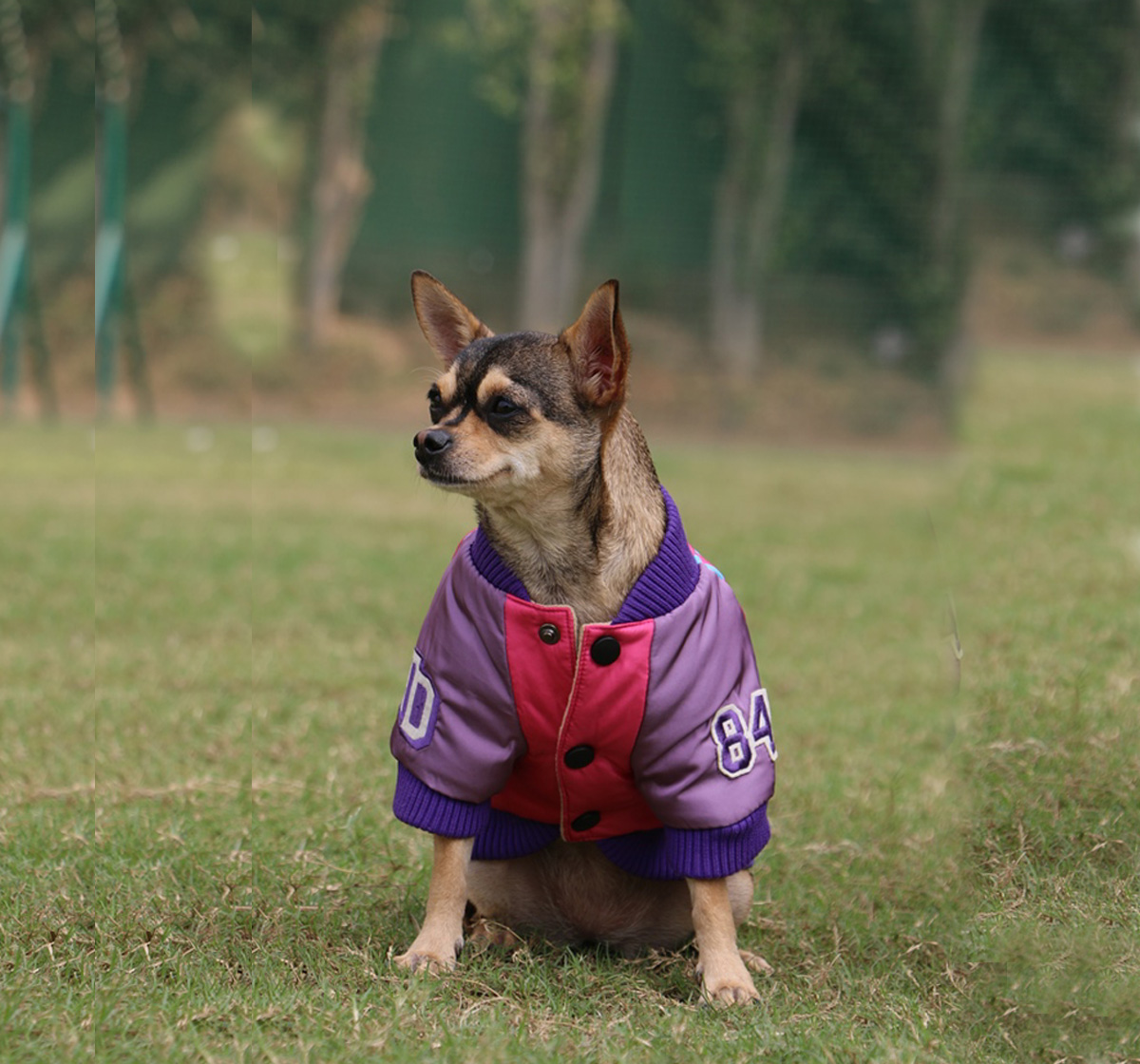 Touchdog Mix & Match Style Jacket Pink - Large