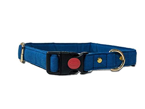 Mutt of Course Blueberry Water- Resistant Collar for Dogs Blue- Large